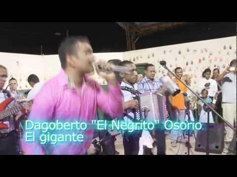 El Gigante - Dagoberto el Negrito Osorio - En Concierto video