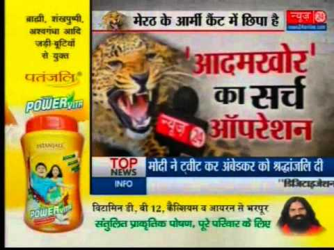 Search operation of Leopard in Meerut