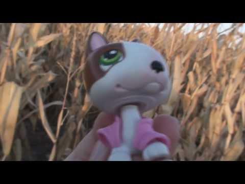 Littlest Pet Shop: Kandy TV Episode #2