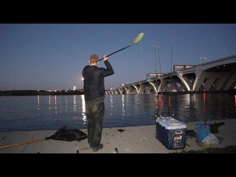 Tricks for bank fishing big rivers. Fishing for catfish and striped bass from shore.