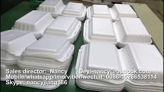 Nancy +8615266538114-PS Foam Disposable fast food container box plate making machine