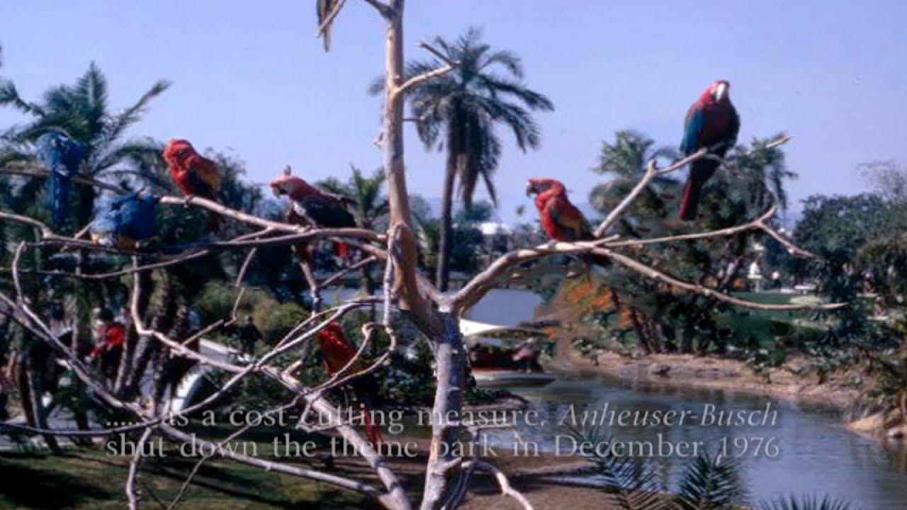 Baby Boomers Tribute Quot Busch Gardens Amp Bird Sanctuary Quot Van
