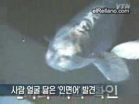 pez humanoide