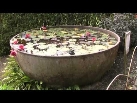 Englische Gärten in Cornwall