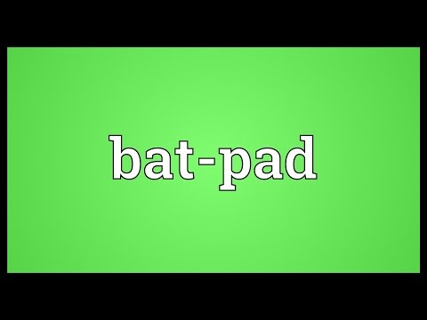 Header of bat-pad