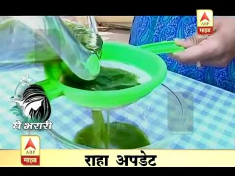 How to make Natural Holi Colours- Deepshikha Foundation by Manisha Chaudhari