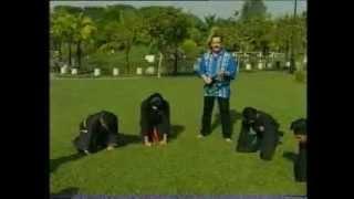 В поисках приключений - Малайзия 2