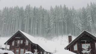 Blizzard Storm Sounds Relaxing Winter Background Sounds Heavy Wind Snow