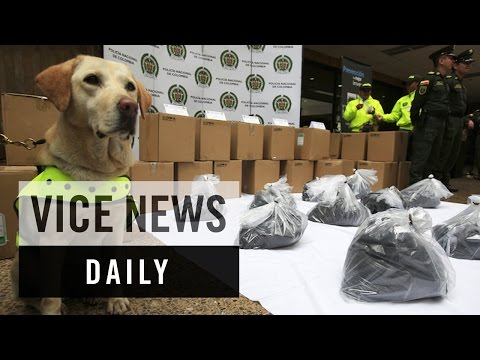 VICE News Daily: Colombia Seizes Cocaine Disguised as Printer Toner