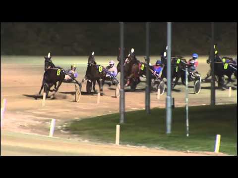 Vidéo de la course PMU PRIX RICK EBBINGE CHAMPION 2014 (ELITE CHALLENGE)