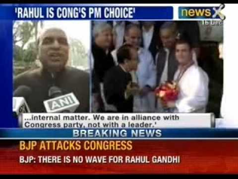 NewsX : Congress may declare Rahul Gandhi its Prime minister nominee on Jan 17