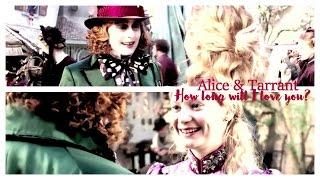 Alice & Tarrant | How long will I love you?