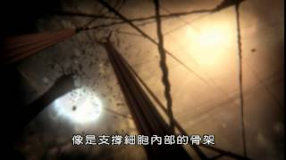 細胞內部的秘密宇宙 Secret Universe, Journey Inside the Cell (BBC)