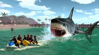 Shark Fish Attack  Horror Sexy Movie Scene Movie Name