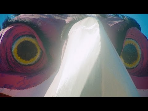 King Gizzard & The Lizard Wizard - People-Vultures (Official Video)