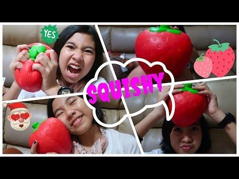 Jumbo Strawberry Squishy