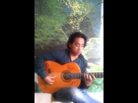 Most famous flamenco guitar alegria