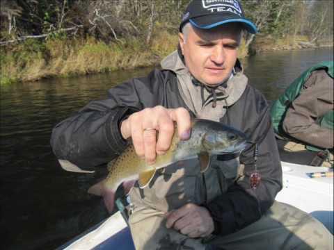 рыбалка на реке кабули