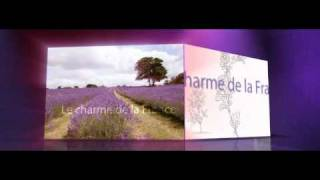 Видео презентация проекта: Видеоролик о бренде L'Ambre