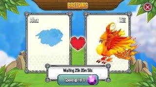 Dragon City Level 82 Gameplay Got the 5th MAGMA Dragon EGG