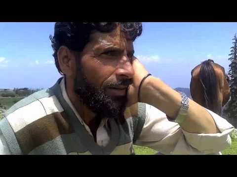 Gojri (Pahari) Folk Song from Khilanmarg; in the Himalayas