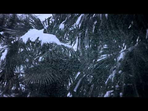 Cortometraje Zapping Life (Short Film)