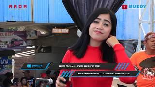 Murti Pratama - Sembilang Patile Telu - ARGA Entertainment LIVE Terminal Sidareja 2019