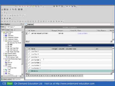 siebel assignment manager