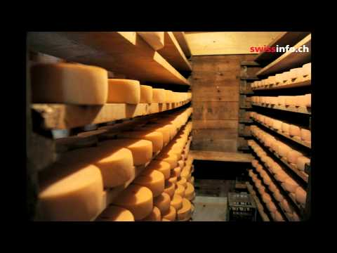 Cómo nace el queso gruyer