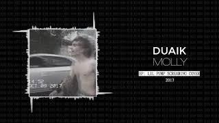 DUAIK - MOLLY (LIL PUMP SCREAMING COVER)