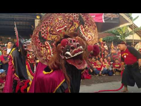 Jangan Melempar - Ini Hiburan - Singo Barong Rogo Samboyo Putro Live Sumber Bendo Kediri