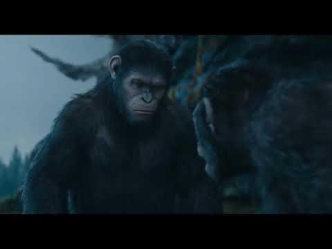 El Amanecer del Planeta de los Simios - Trailer Final Español