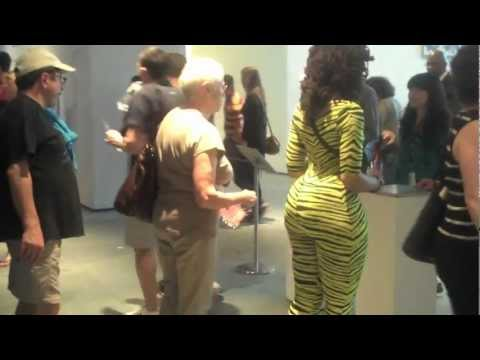 Operation Catsuit Video #1: Museum of Modern Art, NYC