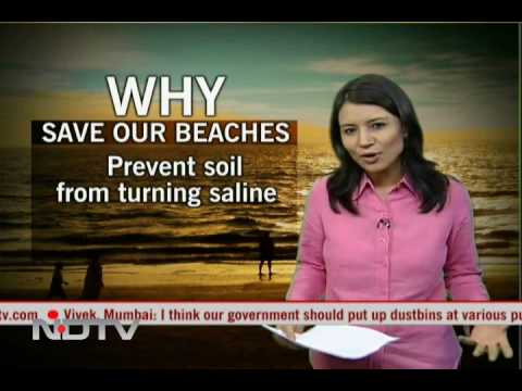 India's Vanishing Beaches