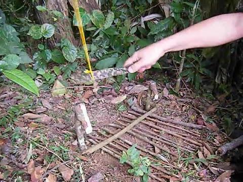 Armadilha para caça de sobrevivência - Plataforma com Laço / Trap game of survival