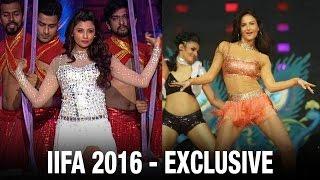 Daisy Shah and Elli Avram's sizzling performance at IIFA Rocks 2016   IIFA Awards 2016