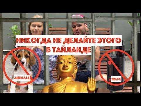 Запрещено в Таиланде.Никогда не делайте этого в Тайланде. #инстатуб #instatube