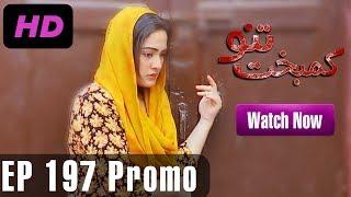 Kambakht Tanno - Episode 197 Promo | A Plus ᴴᴰ Drama | Shabbir Jaan, Tanvir Jamal, Sadaf Ashaan