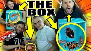 НАЙ-ГНУСНОТО what's in THE BOX Challenge с КиноФен