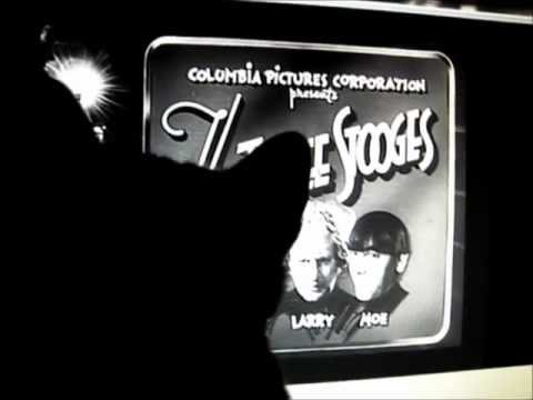 Cat Likes The Three Stooges Theme Song