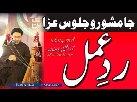The Reaction Jamshoro Juloos-e-Aza by  Allama Syed Shahenshah Hussain Naqvi