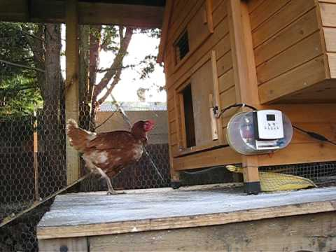 Home Made Automatic Horizontal Chicken Coop Door Opener