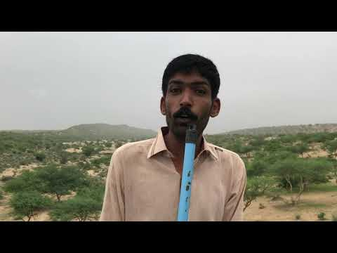 Golden Desert Of Sindh | Thar | Funny Documentory | Tv Reporter | Funny Asghar Khoso