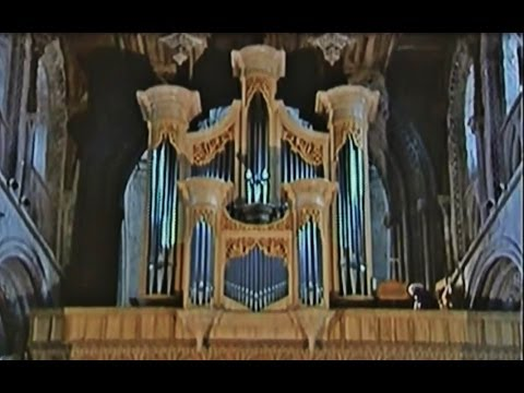 Organist Diane Bish plays Boellmann's Toccata from Gothic Suite on the Organ at St. Davids Cathedral in Wales. http://www.harrison-organs.co.uk/stdavids.html...