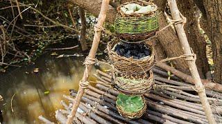 Primitive Evolution: Water Filter