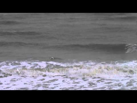 Surfing at St Margaret's Bay, Kent, UK - 27 October 2013