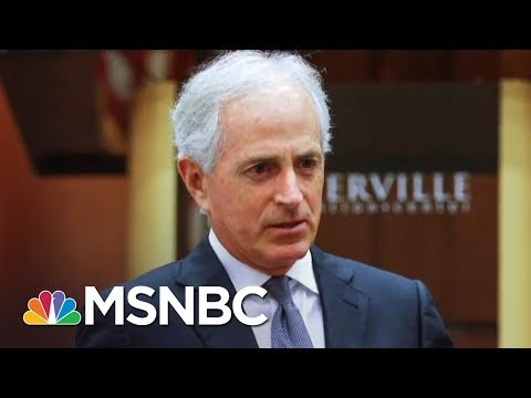 Report: Donald Trump Loyalist Says Trump Presidency 'Could Be Doomed' | The 11th Hour | MSNBC