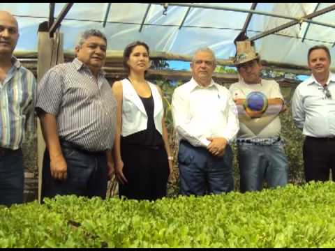 Presos participam de curso de horticultura em fazenda