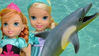DOLPHINS ! Elsa and Anna toddlers SWIM in the OCEAN and watch DOLPHINS!