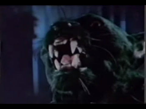 Manimal (panther transformation sequence)